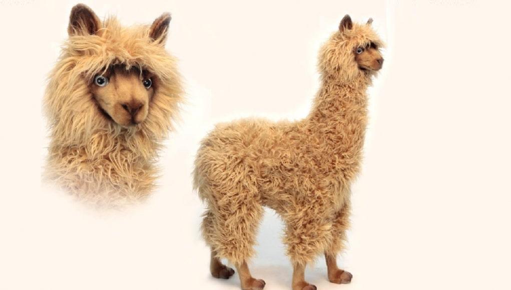 alpaca, bol.com, berijdbare