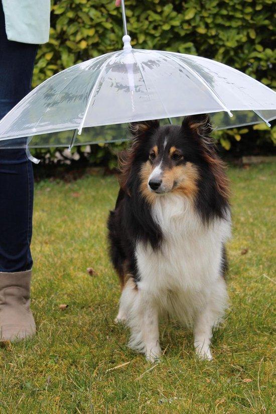 hondenparaplu paraplu voor honden